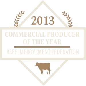 2013 Commercial Producer of the Year